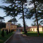 Villa Pini